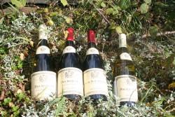 Wine Quartet
