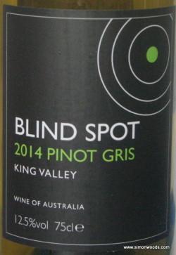 Blind Spot PG-001